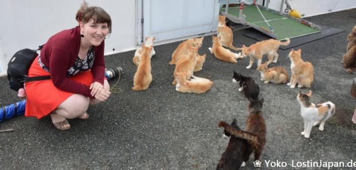 Katzeninsel Aoshima