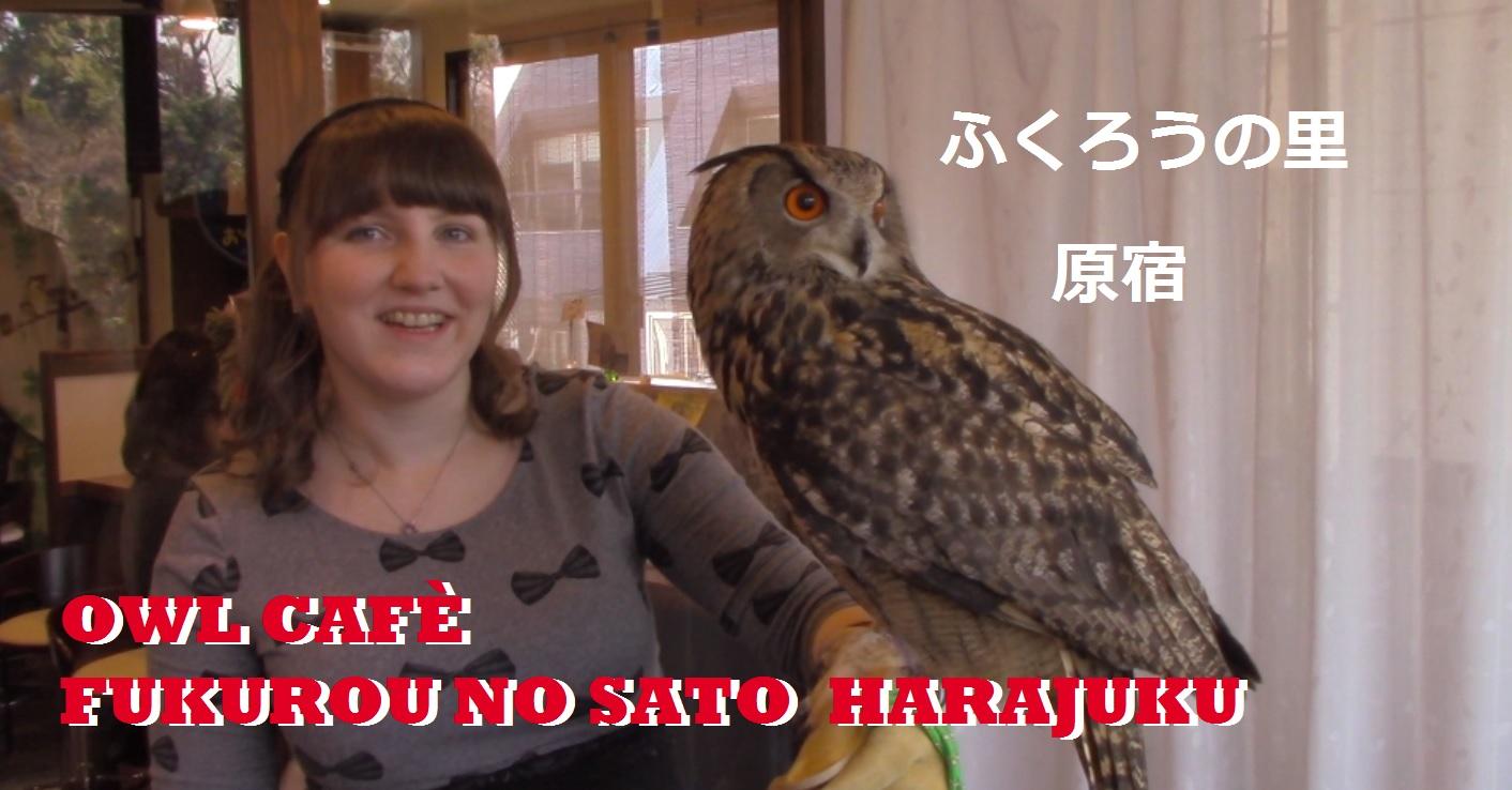 [Video] EulenCafé Fukurou no Sato Harajuku