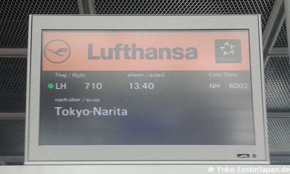 Flug Lufthansa