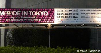 Ayumi Hamasaki - Countdown Live 2015/16