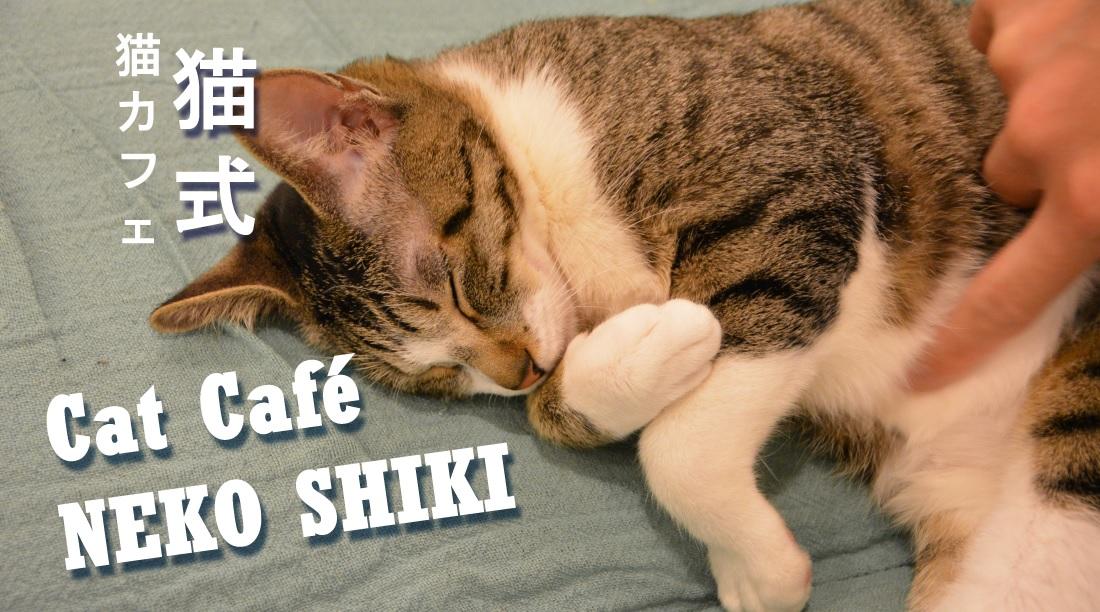 [Video] Katzen-Café Neko Shiki