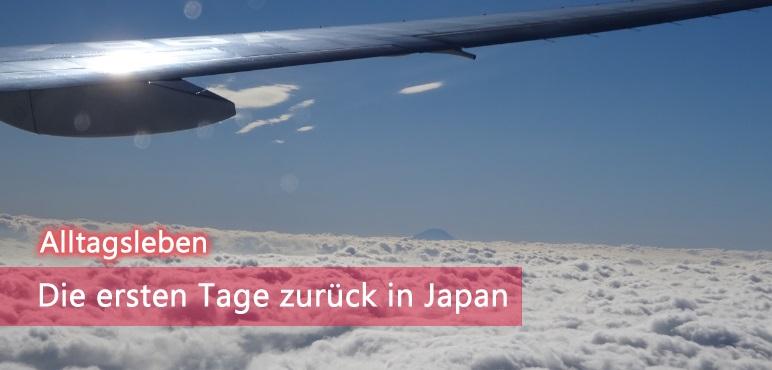 [Alltagsleben] Meine ersten Tage zurück in Japan