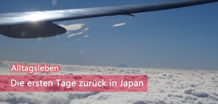 Zurück in Japan