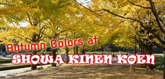 [Video] Showa Kinen Koen im Herbst