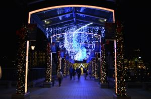 Yokohama Illumination