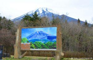 Bustour Fuji