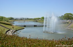 Bustour Hitachi Seaside Park