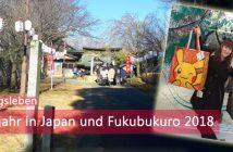 Neujahr & Fukubukuro 2018