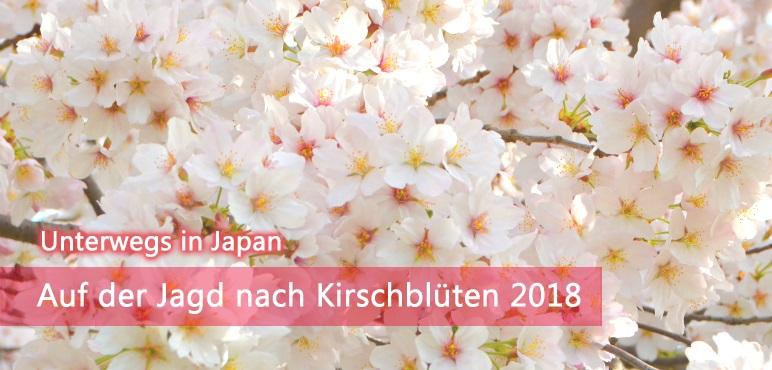 [Unterwegs] Auf der Jagd nach Kirschblüten 2018