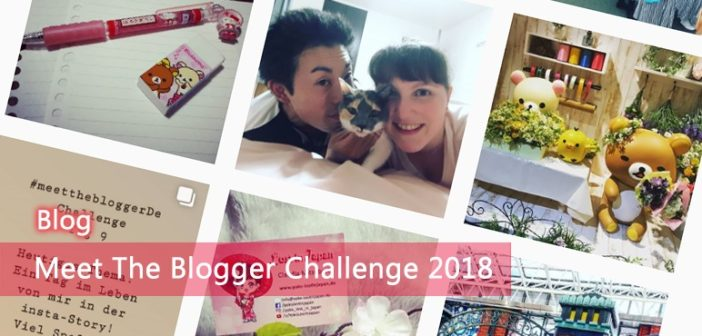 [Blog] Meet The Blogger Challenge 2018