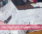 [Alltagsleben] Kotatsu – Das Highlight im japanischen Winter