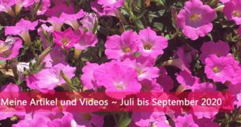 Artikel und Video Übersicht - Juli bis September 2020